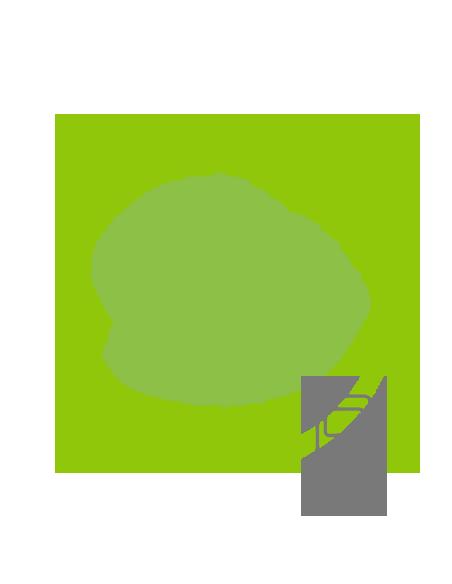 Téléphone sans fil Reconditionné